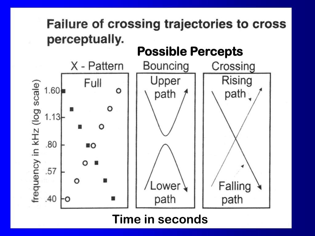 Possible Percepts