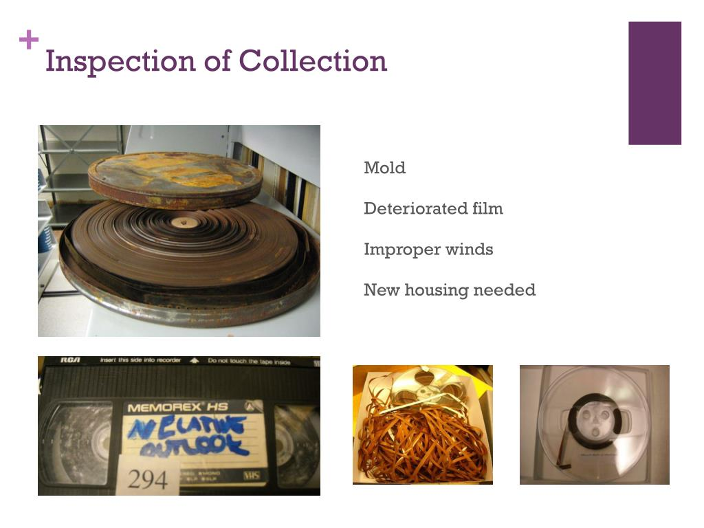 Inspection of Collection