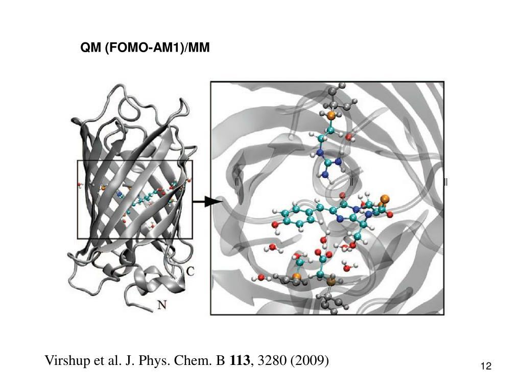 QM (FOMO-AM1)/MM