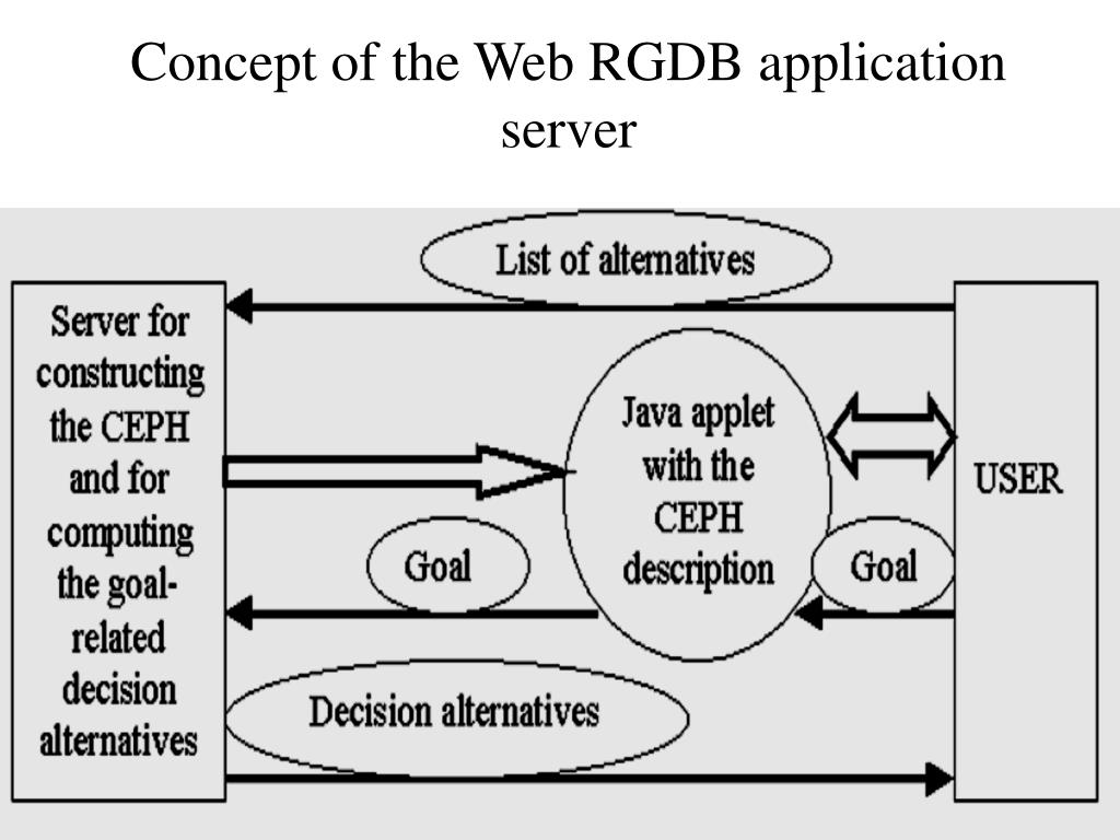 Concept of the Web RGDB application server