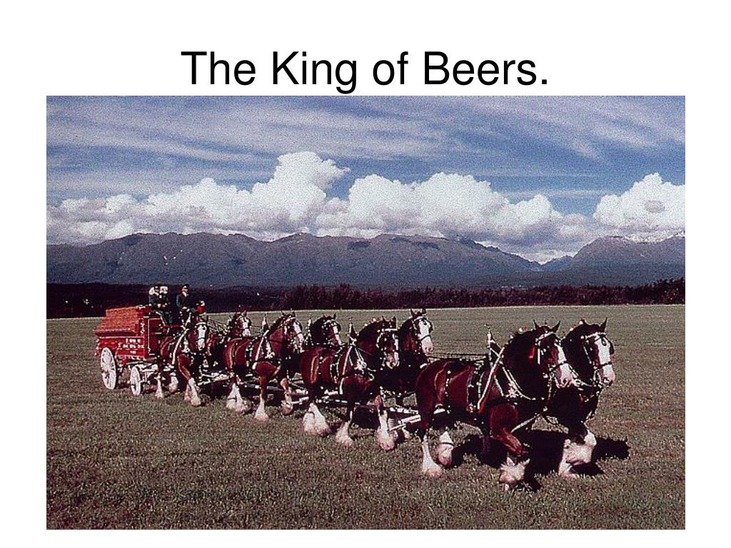 The King of Beers.