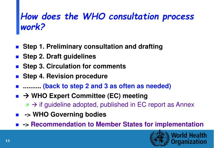 How does the WHO consultation process work?