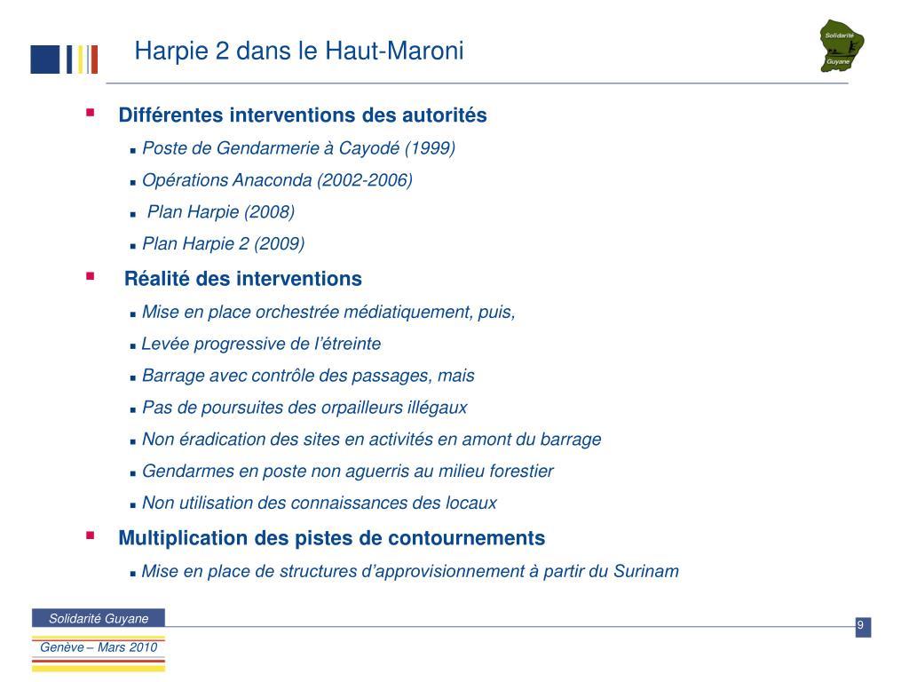 Harpie 2 dans le Haut-Maroni