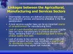 linkages between the agricultural manufacturing and services sectors6