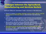 linkages between the agricultural manufacturing and services sectors7