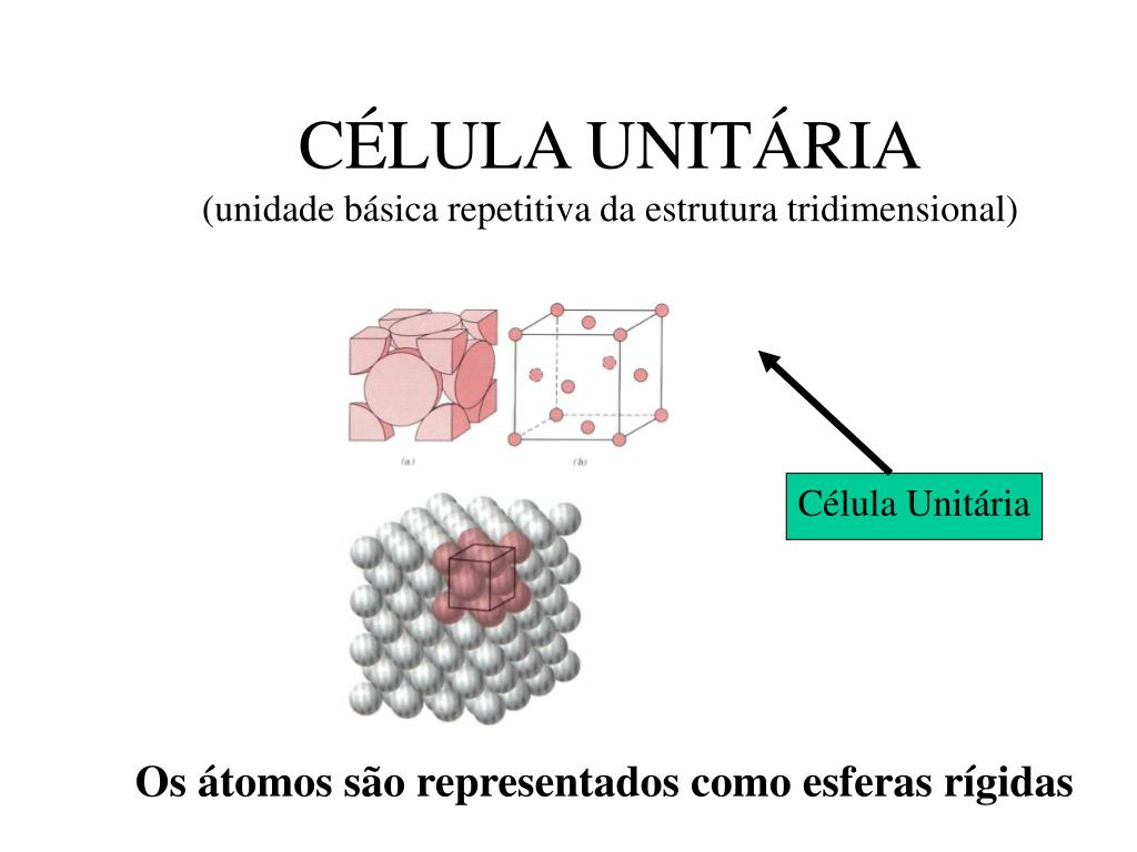 CÉLULA UNITÁRIA