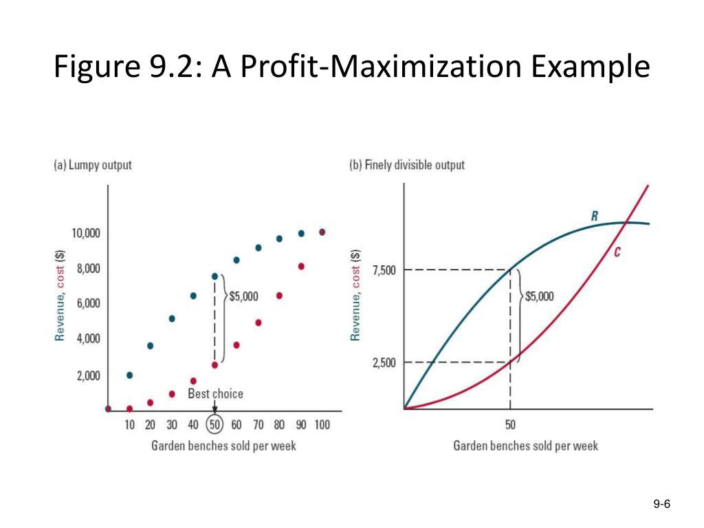 Figure 9.2: A Profit-Maximization Example