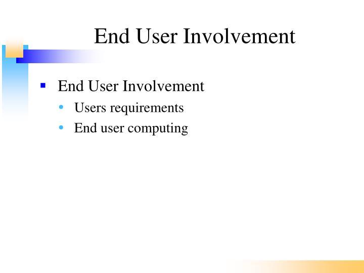 End User Involvement