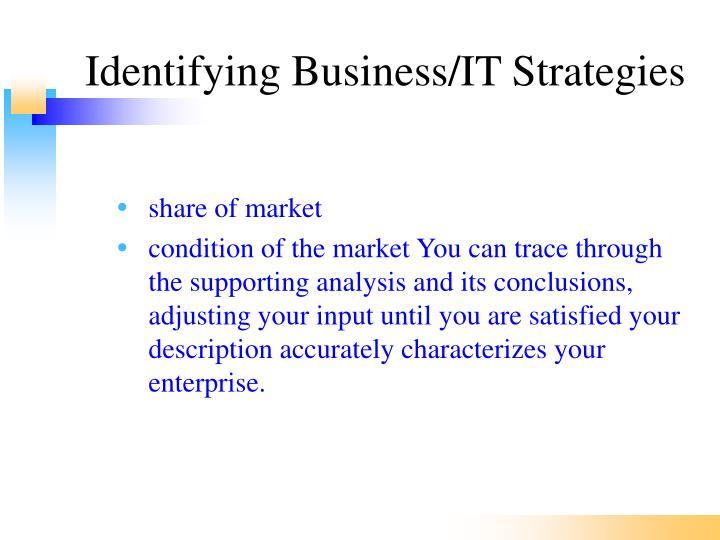 Identifying Business/IT Strategies