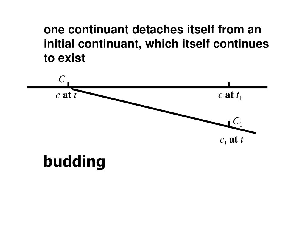 one continuant detaches itself from an initial continuant, which itself continues to exist