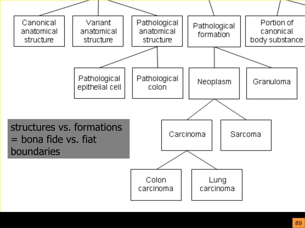 structures vs. formations = bona fide vs. fiat boundaries
