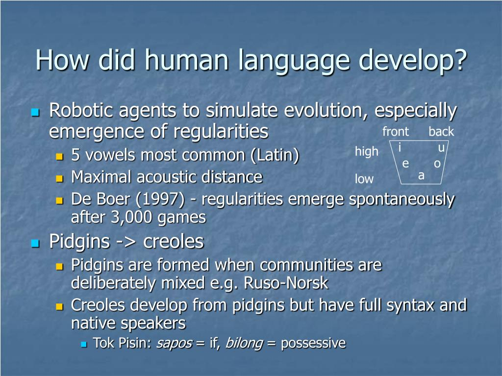 How did human language develop?