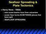 seafloor spreading plate tectonics