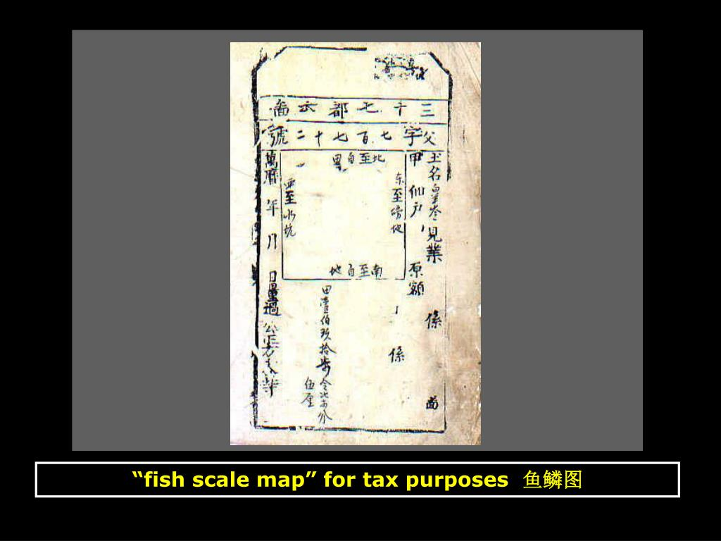 """fish scale map"" for tax purposes"