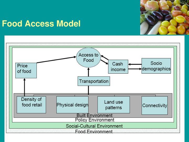 Food Access Model
