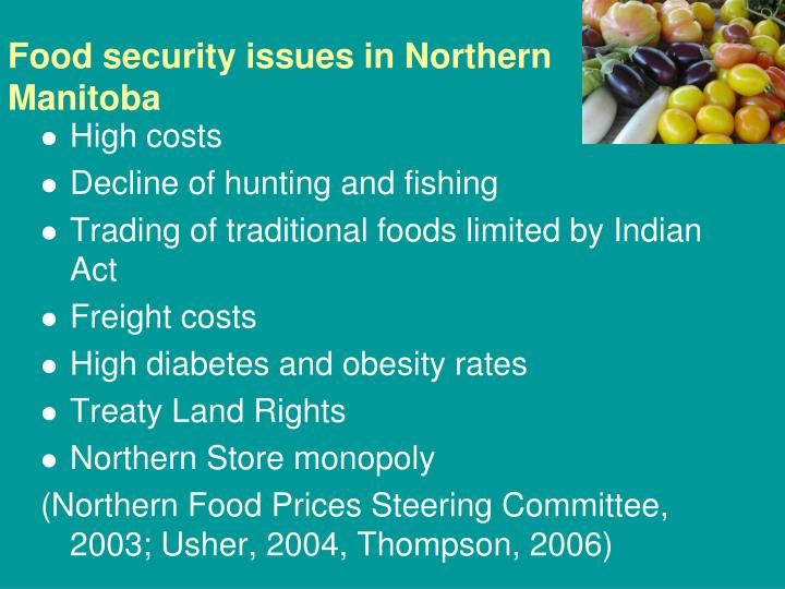 Food security issues in Northern Manitoba