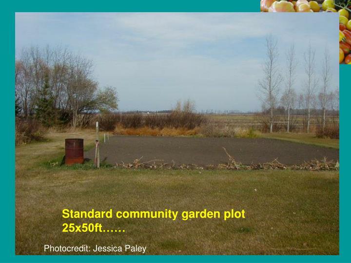 Standard community garden plot 25x50ft……