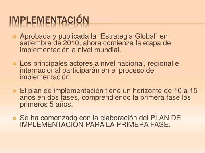 """Aprobada y publicada la """"Estrategia Global"""" en setiembre de 2010, ahora comienza la etapa de implementación a nivel mundial."""