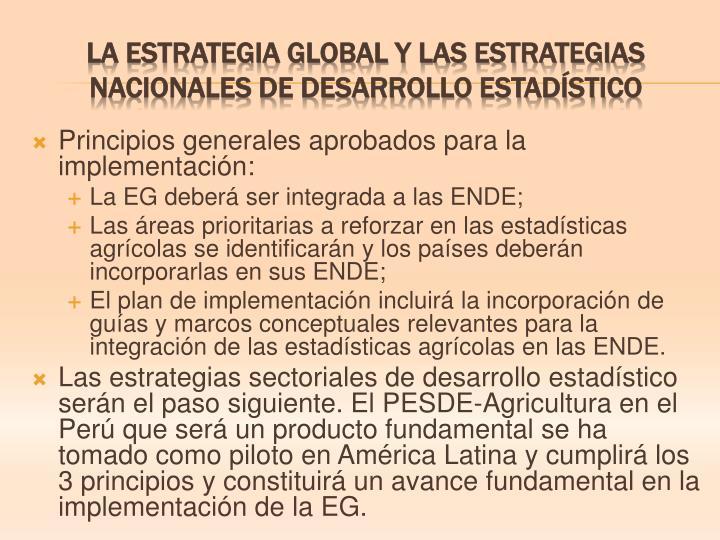 Principios generales aprobados para la implementación: