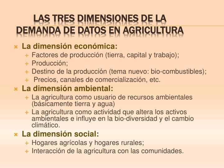 La dimensión económica: