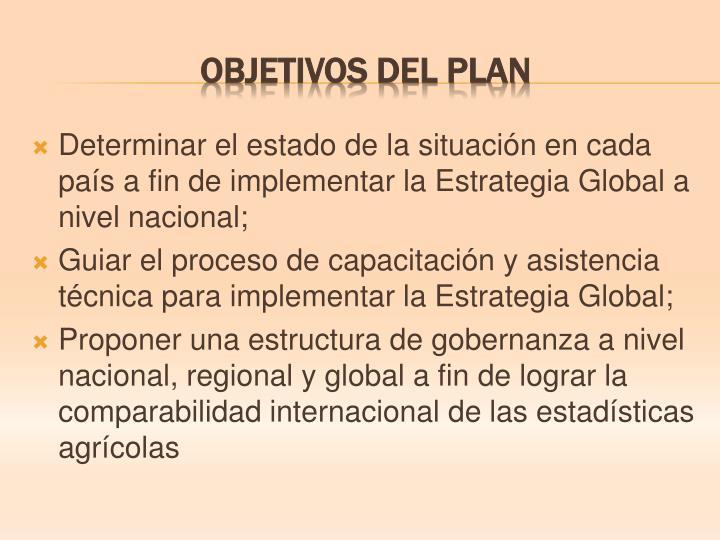 Determinar el estado de la situación en cada país a fin de implementar la Estrategia Global a nivel nacional;