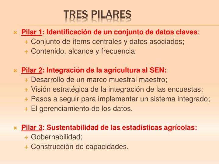 Pilar 1
