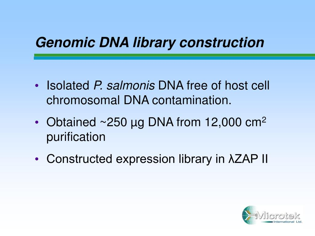 genomic library construction - photo #15