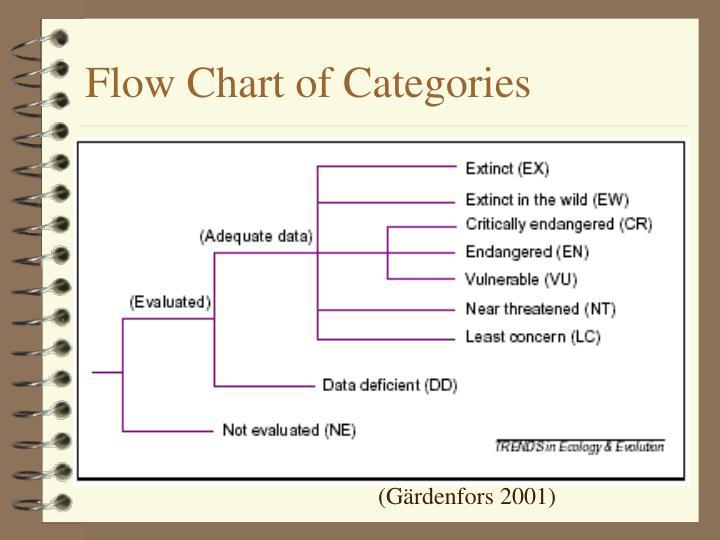 Flow Chart of Categories