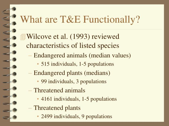 What are T&E Functionally?