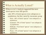 what is actually listed