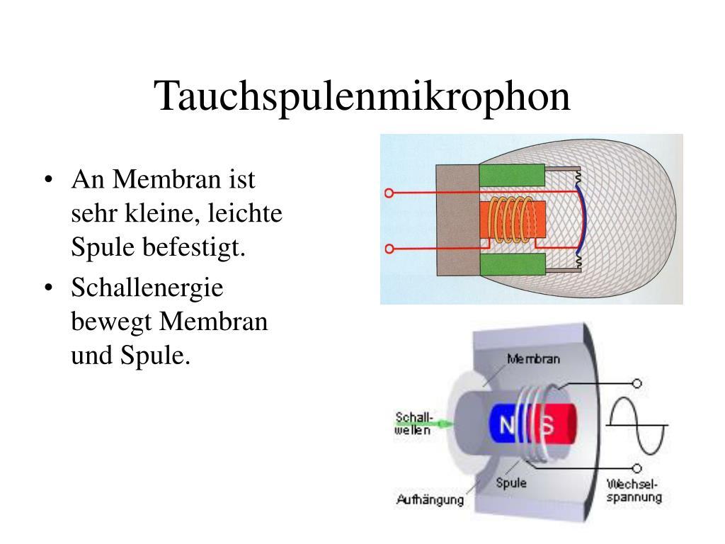 Tauchspulenmikrophon