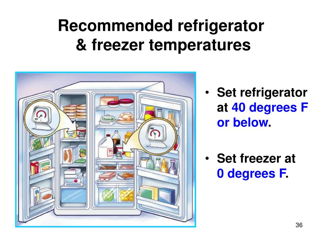 Recommended refrigerator