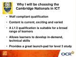 why i will be choosing the cambridge nationals in ict