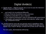 digital divide s