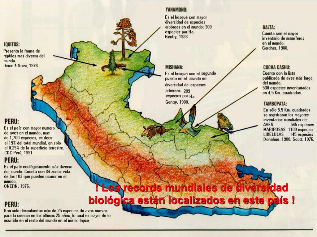 ! Los records mundiales de diversidad biológica están localizados en este país !