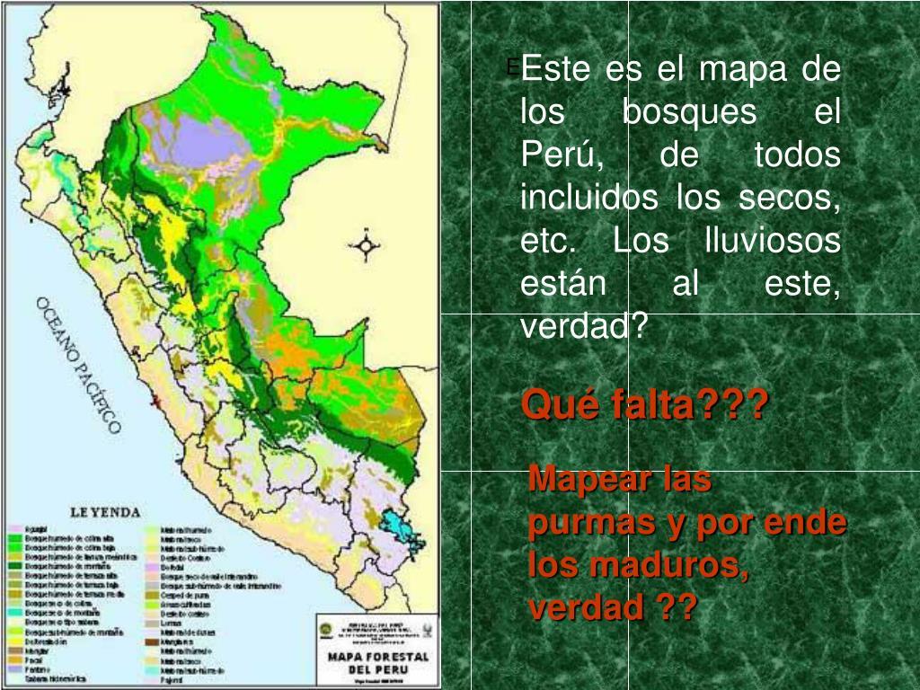 Este es el mapa de los bosques el Perú, de todos incluidos los secos, etc. Los lluviosos están al este, verdad?