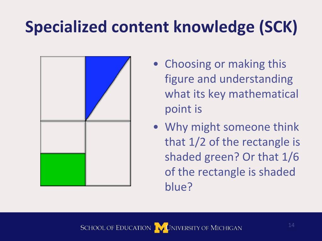 Specialized content knowledge (SCK)