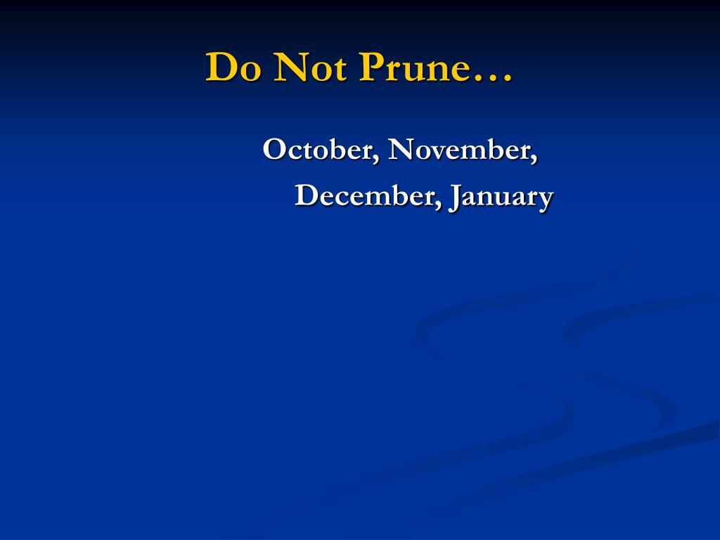 Do Not Prune…