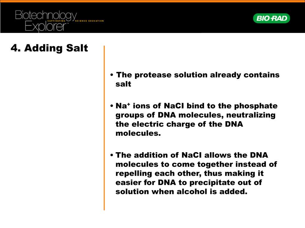 4. Adding Salt