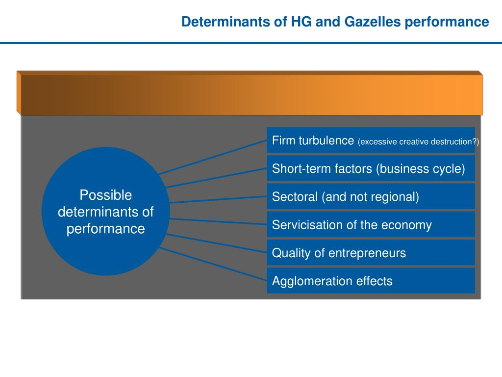 Determinants of HG and Gazelles performance