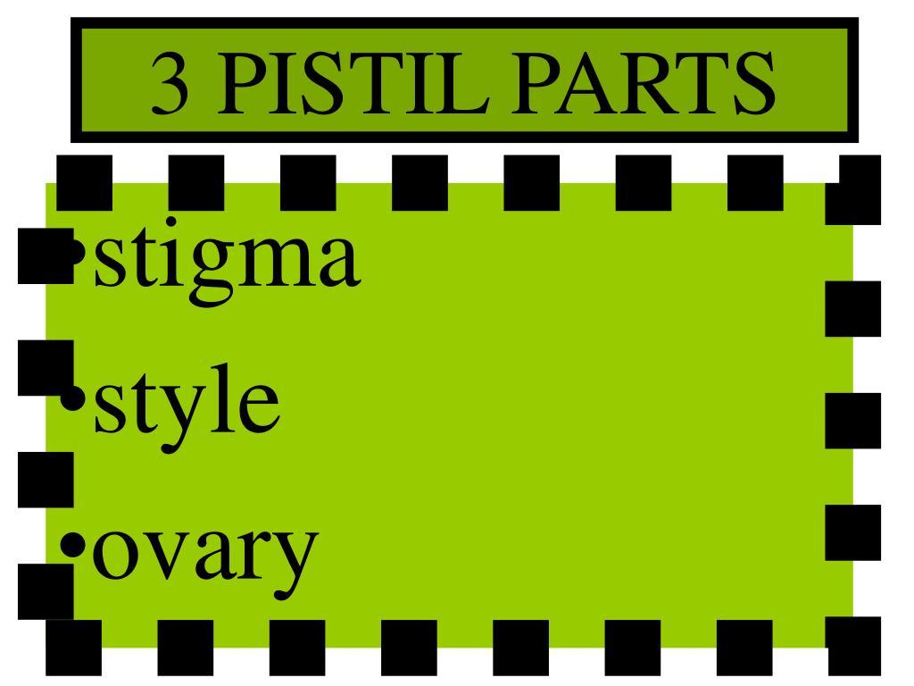 3 PISTIL PARTS