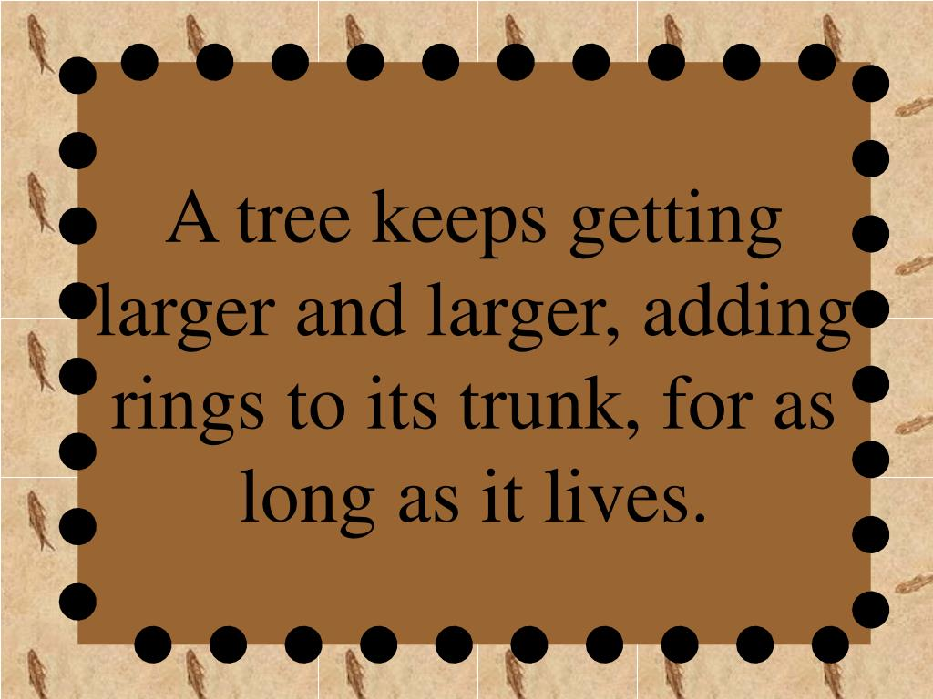 A tree keeps getting larger and larger, adding rings to its trunk, for as long as it lives.