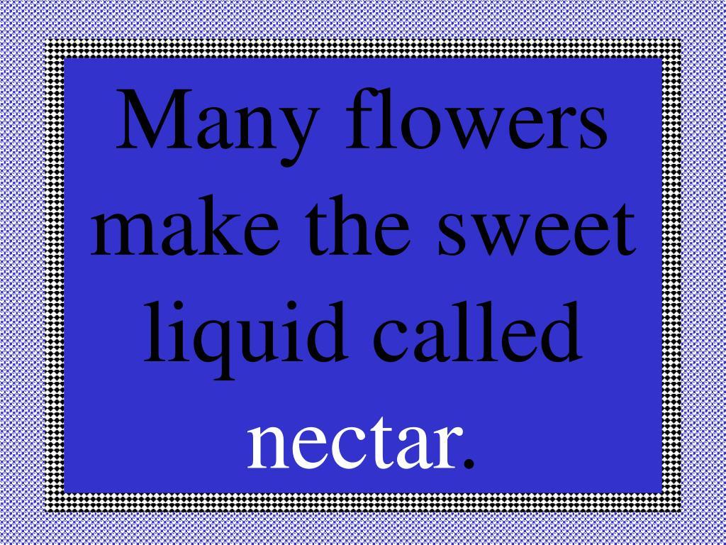 Many flowers make the sweet liquid called