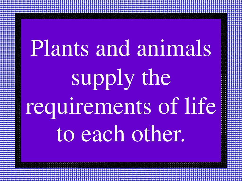 Plants and animals supply the requirements of life to each other.