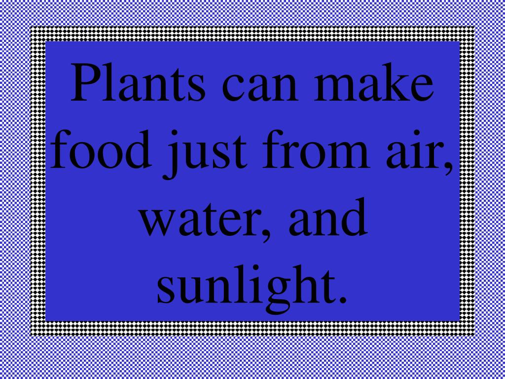 Plants can make food just from air, water, and sunlight.