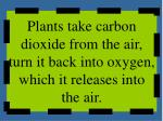 plants take carbon dioxide from the air turn it back into oxygen which it releases into the air