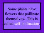 some plants have flowers that pollinate themselves this is called self pollination