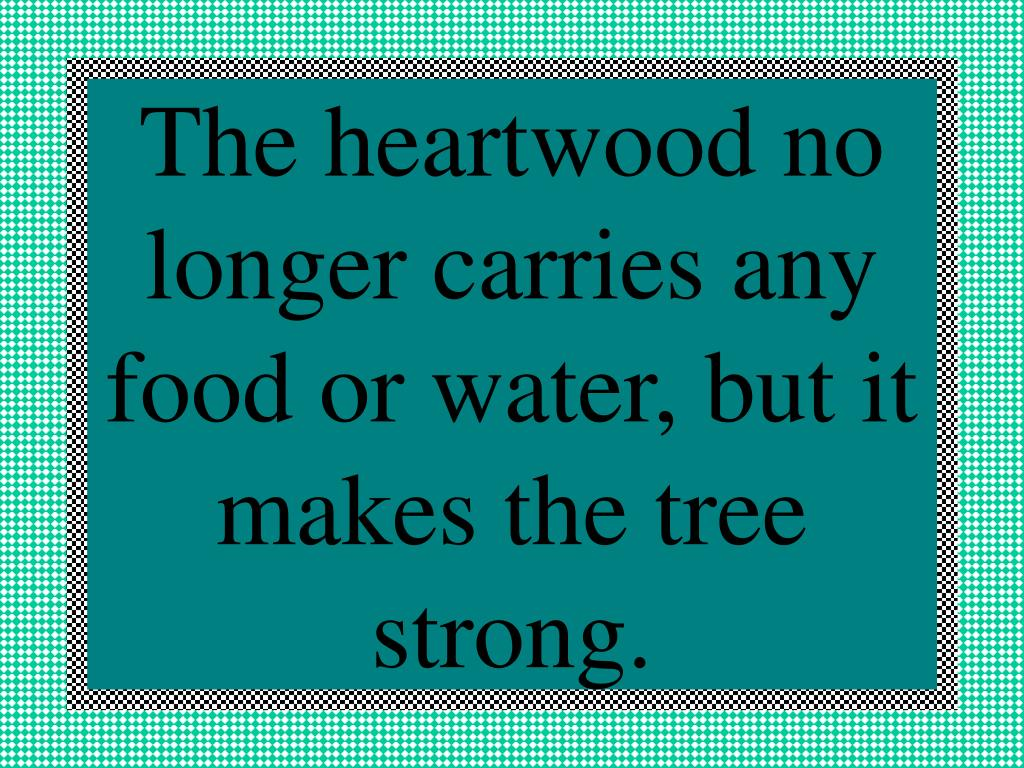 The heartwood no longer carries any food or water, but it makes the tree strong.