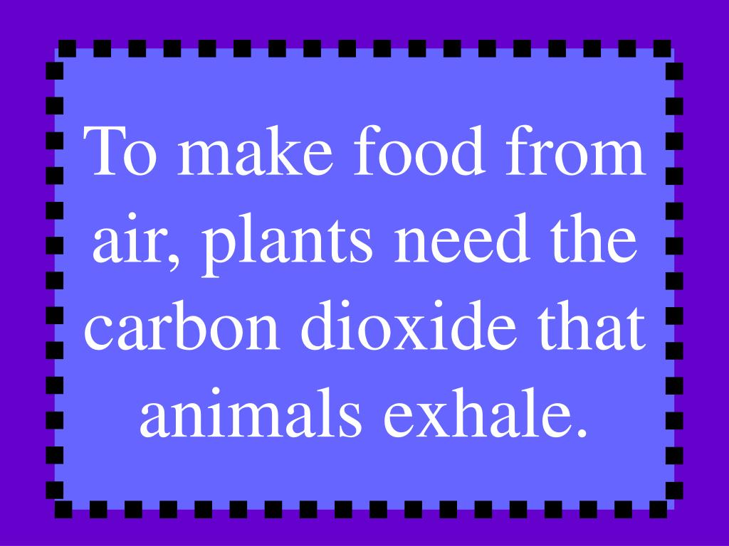 To make food from air, plants need the carbon dioxide that animals exhale.