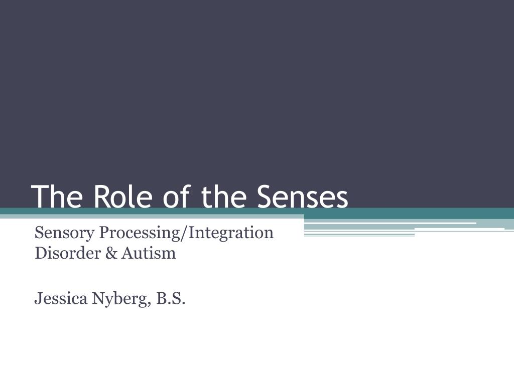 the role of the senses